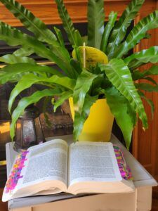 Open book with tags on the site with a plant in a yellow pot on a site table