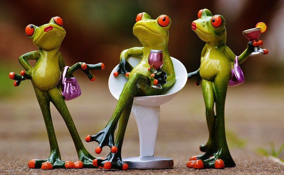 frogs figures, celebrating, party, drinks. is venting healthy