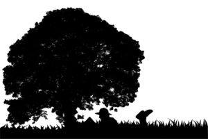 silhouette of a man reading a book under a tree
